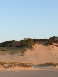 The crowning glory of this park is the dunes and Lake Michigan.